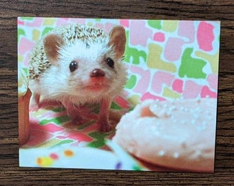 Birthday Hedgehog Postcard, set of 2, Katniss Hearts Cupcakes