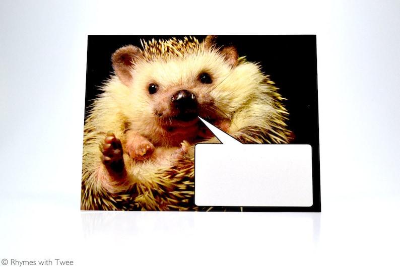 Word Bubble Hedgehog Postcard set of 2 O QLY HERMIONE image 0