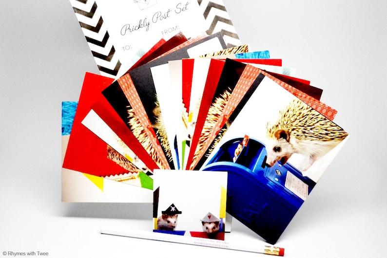 Prickly Post Set Photographic Hedgehog Postcard Stationery image 0