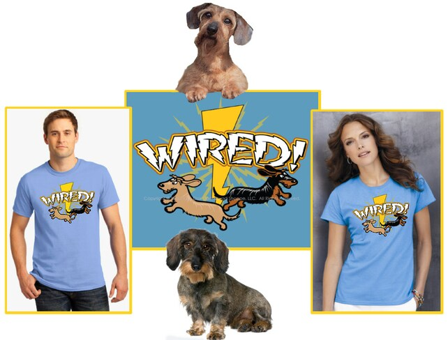 Wired / Wirehaired Dachshund T-Shirt | Etsy