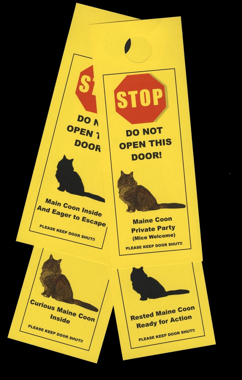 Keep Maine Coon Cats Safe With Humorous Beware Of Pet Signs Etsy