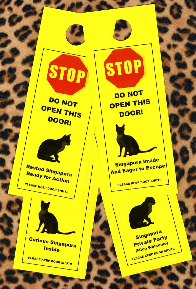 Singapura Friendly Door Alerts Keep Curious Cat Safely Indoors Etsy