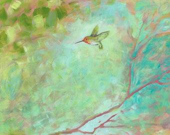 Modern Abstract Hummingbird Art - Fine Art Print by Jenlo