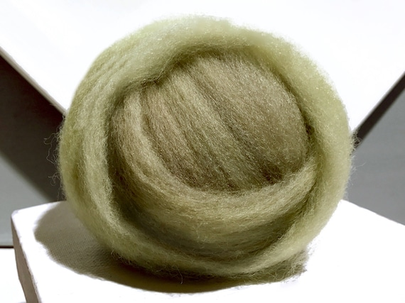 Lichen Green wool roving, Needle Felting wool, Spinning fiber, yellow green,  grey green roving