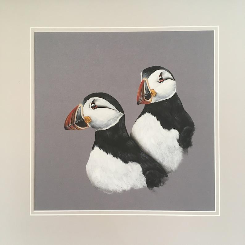 Puffins fine art print.  British wildlife sea birds. image 0
