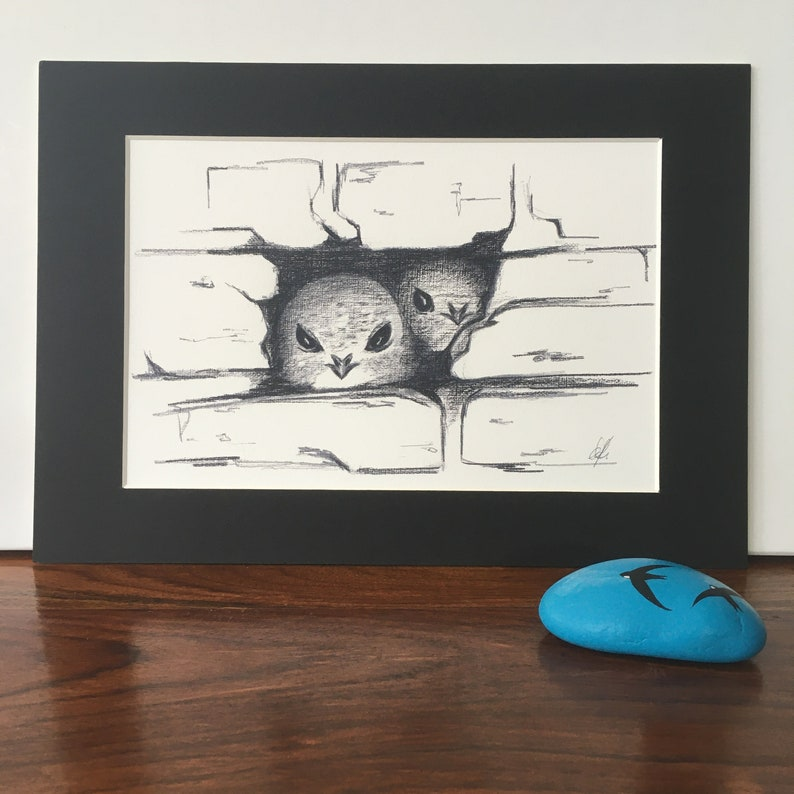 Common Swift Swiftlets mounted fine art print pencil sketch. image 0