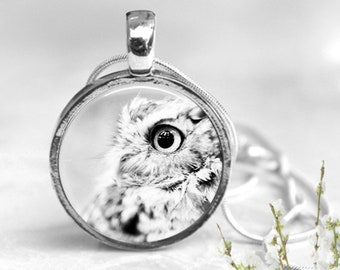 Owl Bird Keychain, Owl Pendant Necklace, Key Ring, Resin Pendant, Keychain Pendant, Keychain, Christmas Gift, Resin Jewelry, Unique Gift