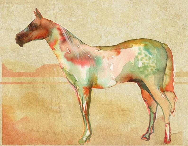 horse no.1 Art Print  11 x 14 inches image 0