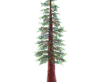 Redwood Tree Art Print -  watercolor and gouache reproduction