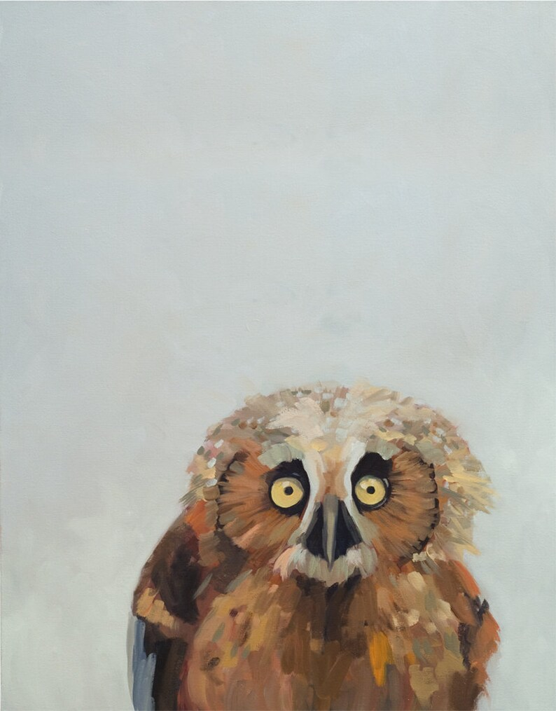 Baby Owl  painting nature oil painting art print image 0