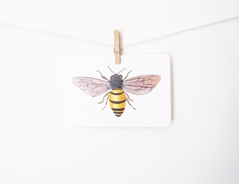 Honey Bee Art Postcard  watercolor botanical gouache image 0