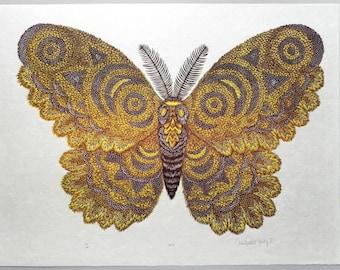 Moth - Woodcut Print, Woodblock Print by Tugboat Printshop