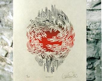 Gravity - Apple Woodcut Print, Woodblock Print by Valerie Lueth   Tugboat Printshop