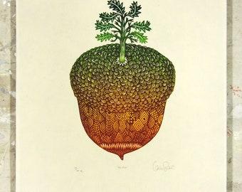 Acorn - Woodcut Print, Woodblock Print by Tugboat Printshop