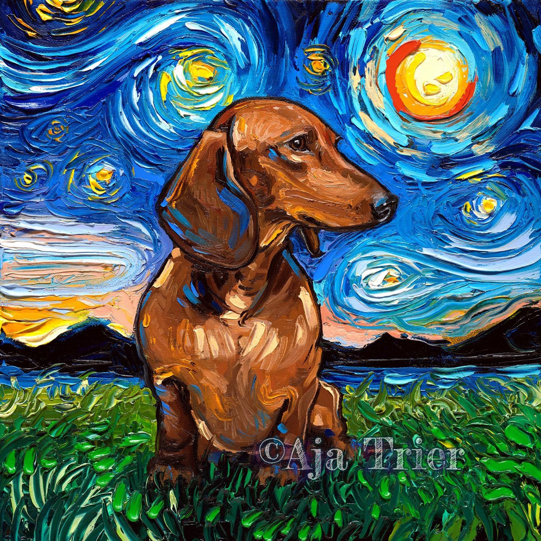 vedere dachshund