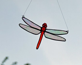 Autumn Meadowhawk Dragonfly, Red tailed Dragonfly, unique wedding gift, anniversary gift