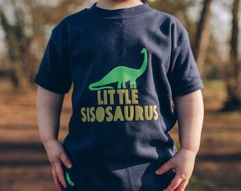 Brother or Sister Dinosaur T shirt Set
