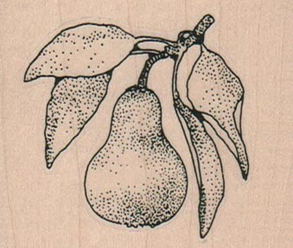 Pear rubber stamp Steampunk Victorian  fruit stamping supplies  rubber stamp    stamp number 9862