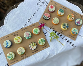 Poison Apothecary Magnets