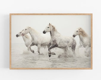 Horse Art, Nature Photography, Camargue Horse Print, White Wall Art, Nature Print, Fine Art Photography Print
