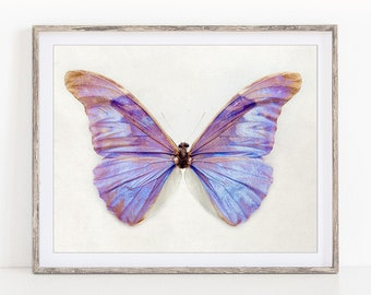 """Nature Photography, Purple Butterfly Print, Nature Print, Butterfly Art Print, Nature Lover Gift, Butterfly Wall Art """"Irridescence"""""""
