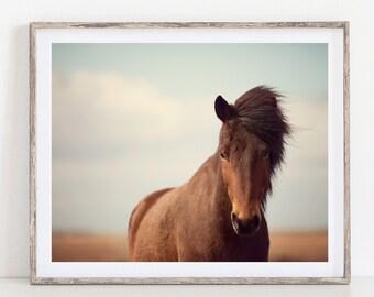 Horse Print, Rustic Nature Photography, Prints, Rustic Wall Decor, Farmhouse Decor, Icelandic Horse Art, Neutral Wall Decor