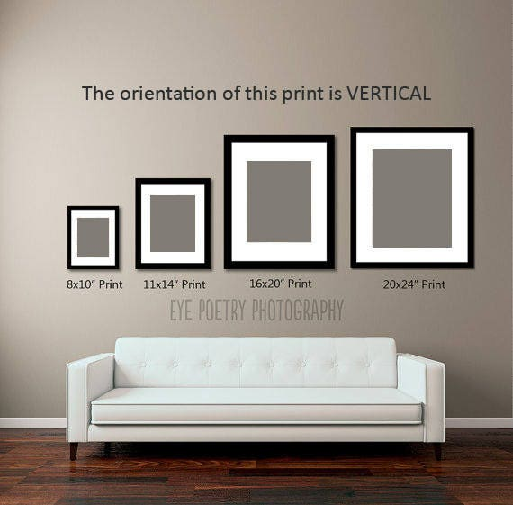 prints 11x14 www