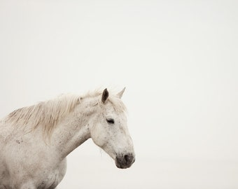 "White Horse Photograph, Fine Art Print, Minimalist Modern, Nature Photography Print, Scandinavian Art, White Wall Decor ""White on White"""