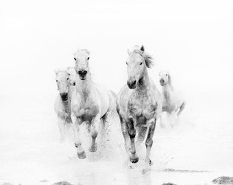 """Horse Art, Black and White Prints, Nature Photography, Horse Photography Print, Horse Wall Art, Fine Art Photography """"Ghost Riders"""""""