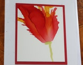 Set of 5 Handmade Greeting Cards - Floral Bloom - Yellow, Red - Hand-Painted Original Art - Blank Note Cards