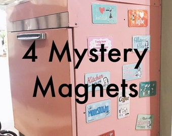 4 Mystery Magnets. Mystery Gift Pack. Surprise Set. Set of 4 Funny Magnets. Funny Kitchen Magnets. Silly Refrigerator Magnet. Gift under 10.