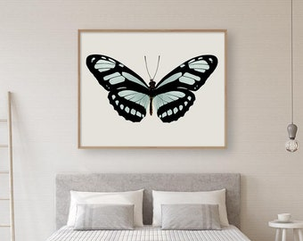 Butterfly Wall Art Print, Photography, Insect Art, Aqua, Black, Butterfly Art, Large Wall Art Print, Fine Art Photograph, Butterfly Photo