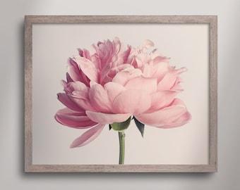 Pink Peony Print, Pink Flower Print Wall Decor, Pink Peony Wall Art, Beautiful Art Print, Flower Photography, Blossom Wall Art, Peony No. 83