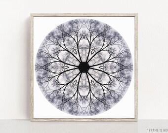 Peaceful Wall Art, Geometric Art, Spiritual Gift for Women, Mandala Artwork, Meditation Art, Office Wall Art, Large Print, Mandala No. 494