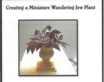 How to Create you own Miniature Wandering Jew PLant