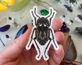 """Darkling Beetle (Gyriosomus parvus) Vinyl Insect Sticker 1.75""""x3"""""""