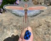 "Blue-winged Grasshopper (Tropidacris collaris) 2.22"" x 3"" Clear Sticker"