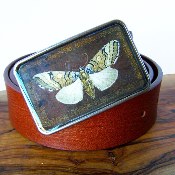 Moth Naturalist Buckle.