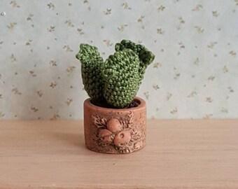 Häkeln Miniatur Kaktus Pflanze