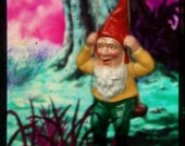 Set of 5 Miniature Spring Gnome Scenes through the viewfinder TTV Photographs by James Spicer