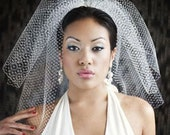High Fashion Birdcage Veil