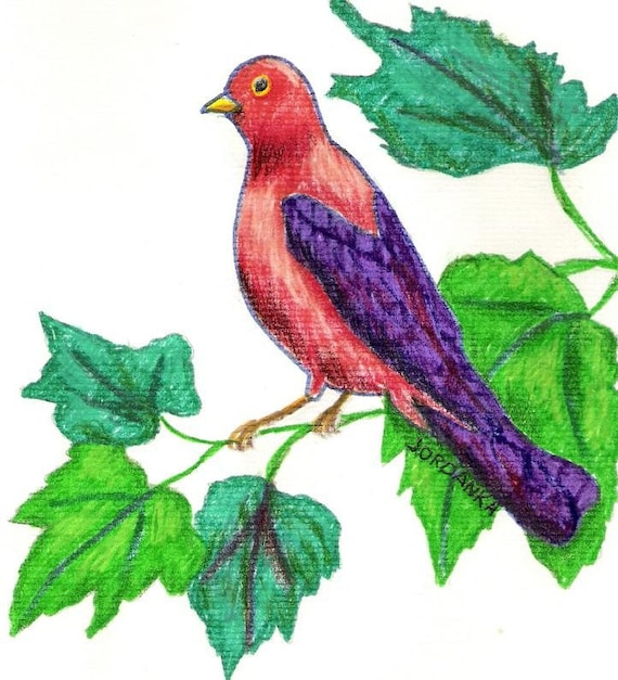 Oiseau Arbre Branches Feuilles Original De Couleur Dessin Etsy