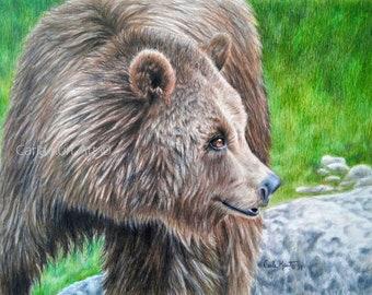 Bear Art BROWN BEAR Original Artwork by Carla Kurt grizzly bear