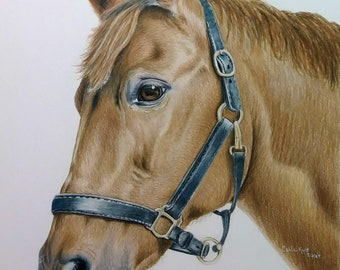 CUSTOM Pet Portrait, horse portrait 11 x 14 cat horse memorial, best etsy, top etsy seller best selling item, FREE shipping