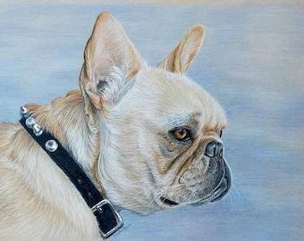 Custom Pet Portrait, dog portrait 11 x 14 cat dog horse memorial, best etsy shop, top etsy seller best selling item