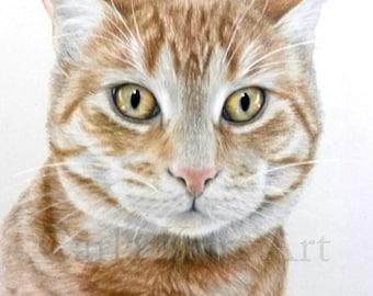 Hand Drawn Pet Portrait Custom 8 x 10 Colored Pencil cat dog horse memorial best etsy shop