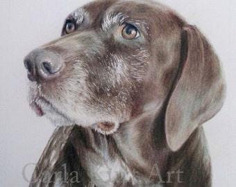 CUSTOM Pet Portrait, dog portrait 11x14 cat horse memorial, best etsy shop, top etsy seller best selling item