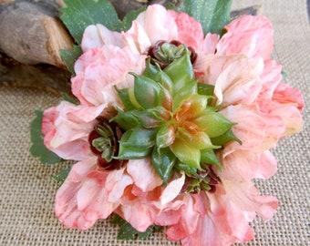 Succulents/ Cactus......