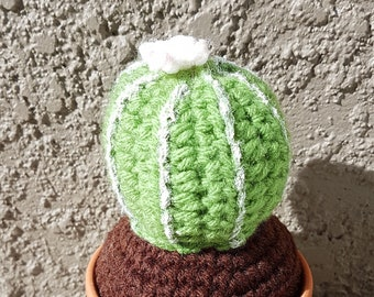 Crochet Barrel Cactus with White Flower 2