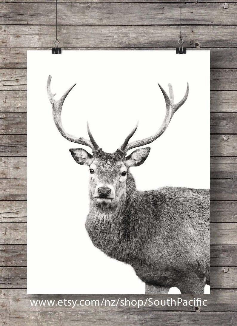 site de rencontres gratuit pour femmes red deer